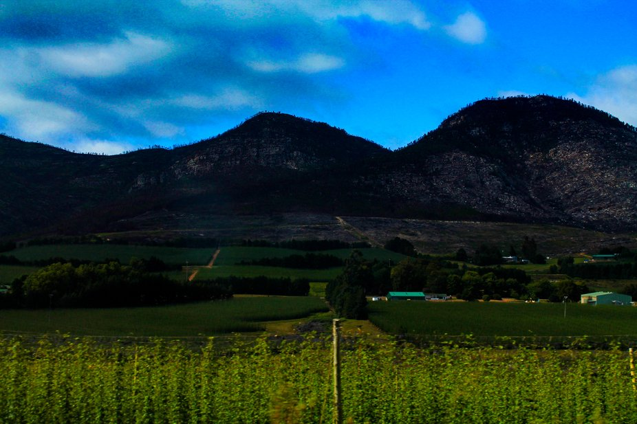what a vine mountain