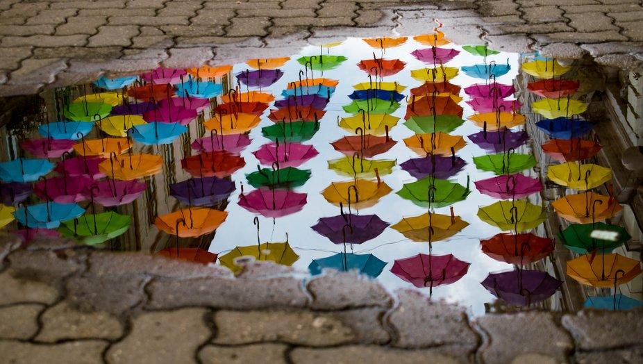 umbrella's point of view