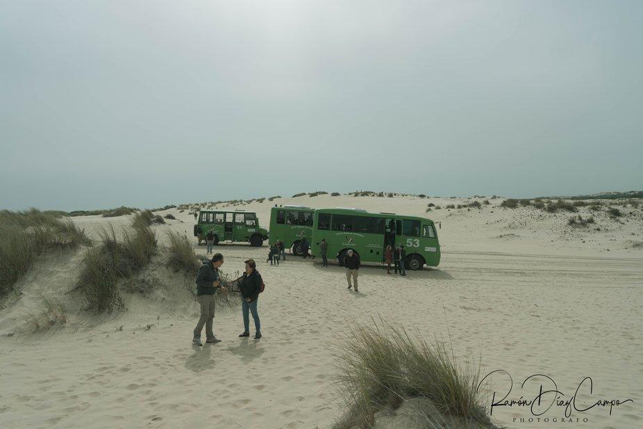 Parada en Doñana