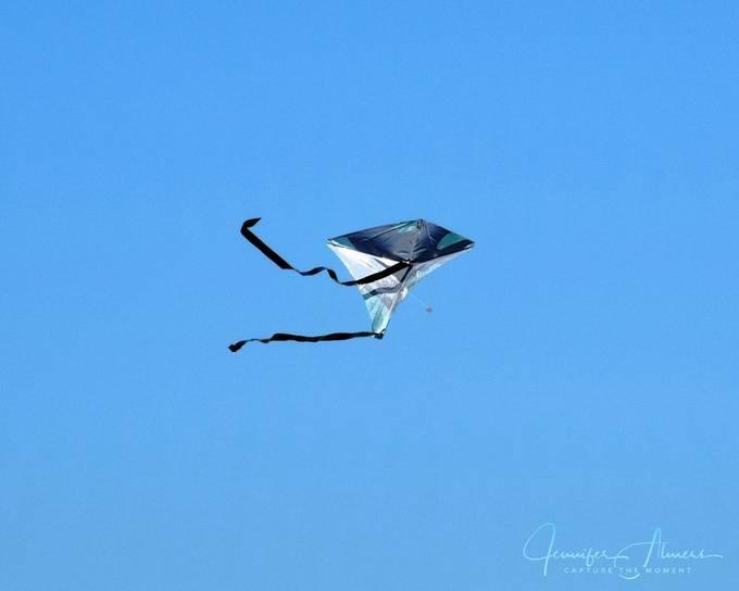 Lovely Kite in Flight