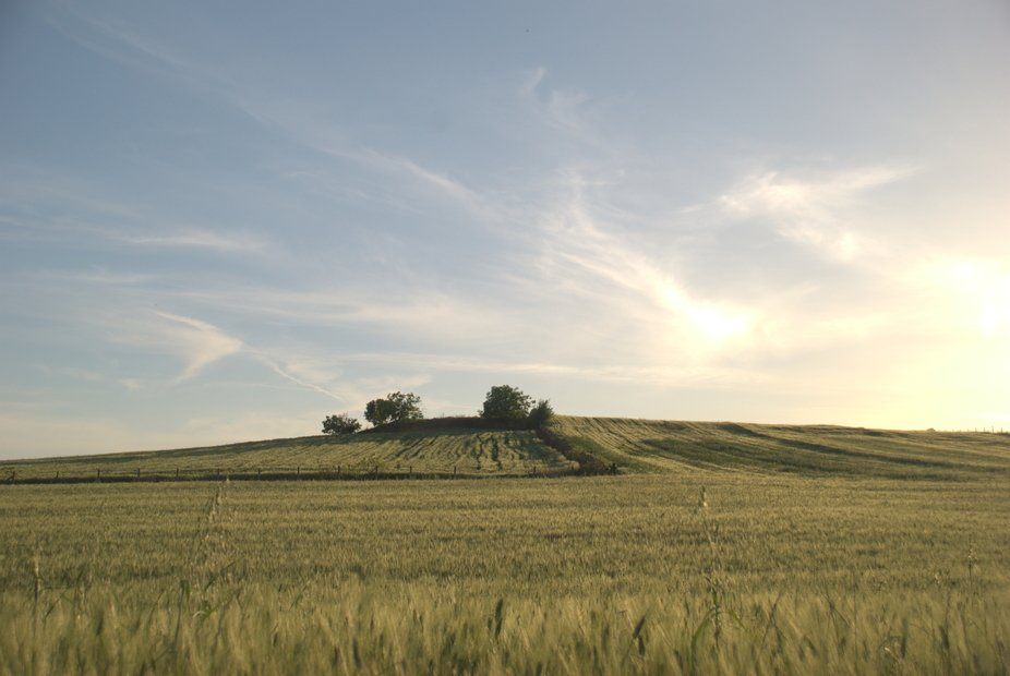 Land scape....
