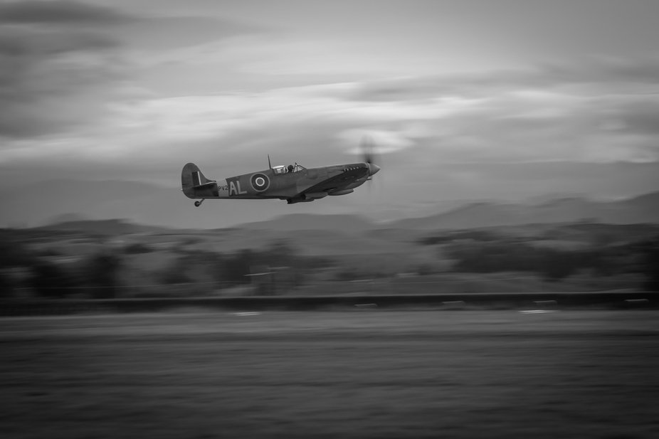 A Spitfire Mk IX takes flight at the Classic Fighters airshow in NZ 2019