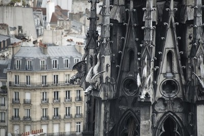 Spire of Notre Dame