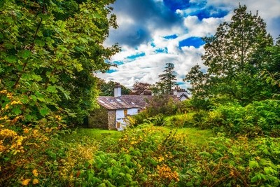 Cottage in the bush