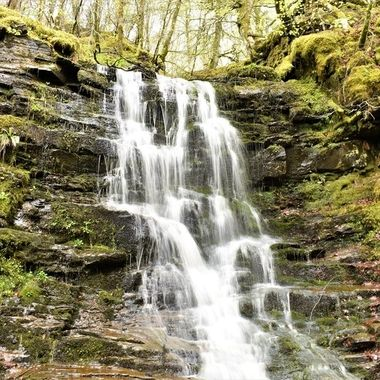 Waterfall up the Birks of Aberfeldy after the rains