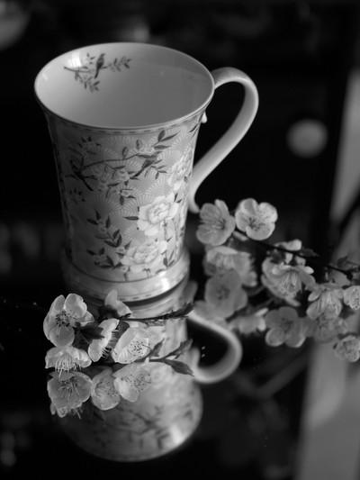 Fine art porcelain mug