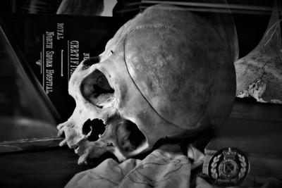 IMAG0675 (2) Anatomy