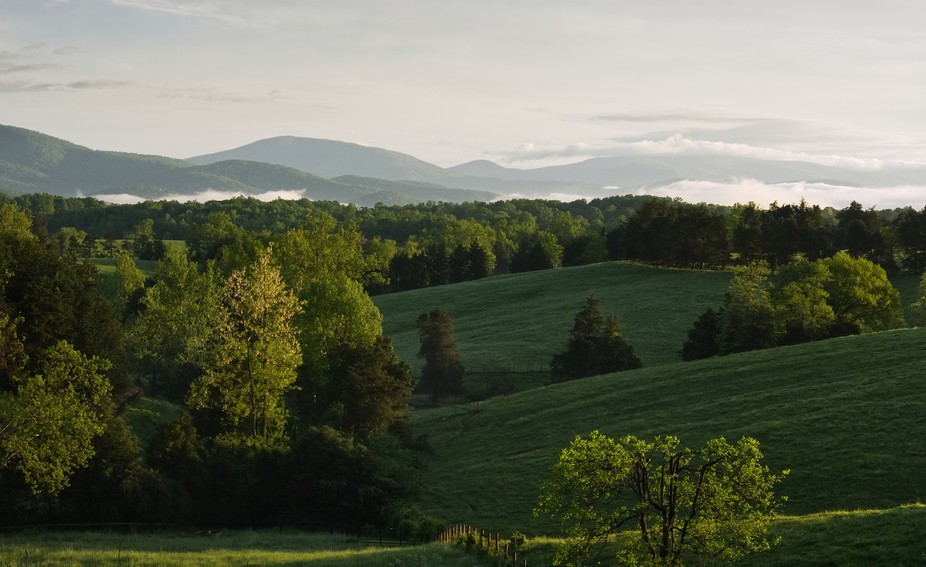 spring morning in the Blue Ridge Mountains