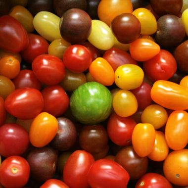 Tomato Tomayto