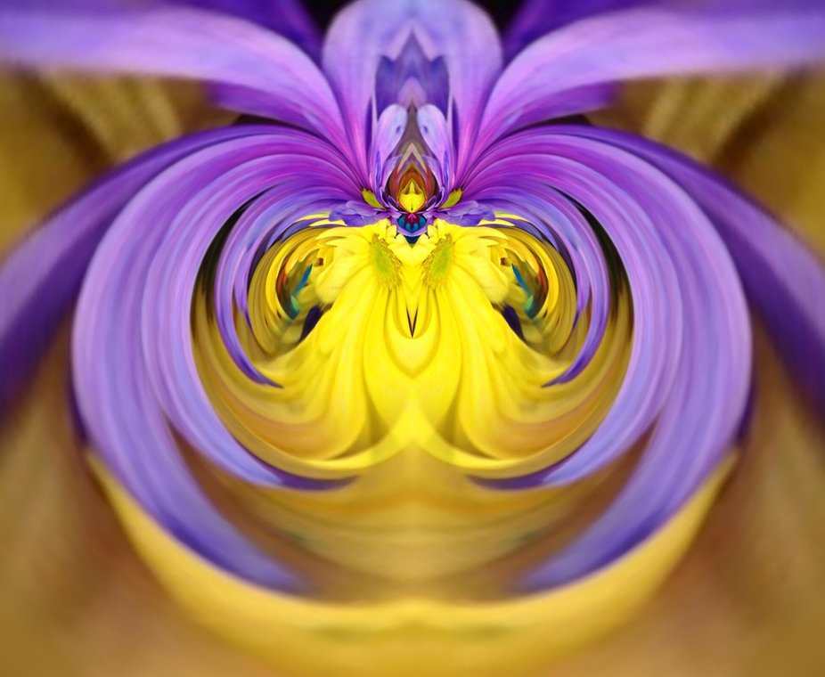 Distorting this flower made it more beautiful, although I don't like using digital programs, it...