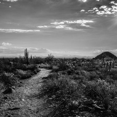 A landscape shot I took at The White Tank Mountains in Arizona.