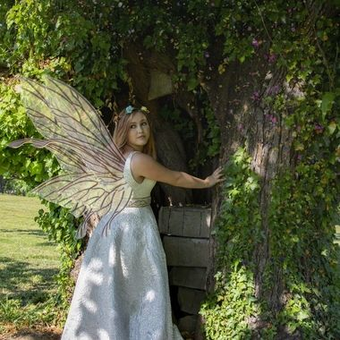 Fairy Fantasy Portrait