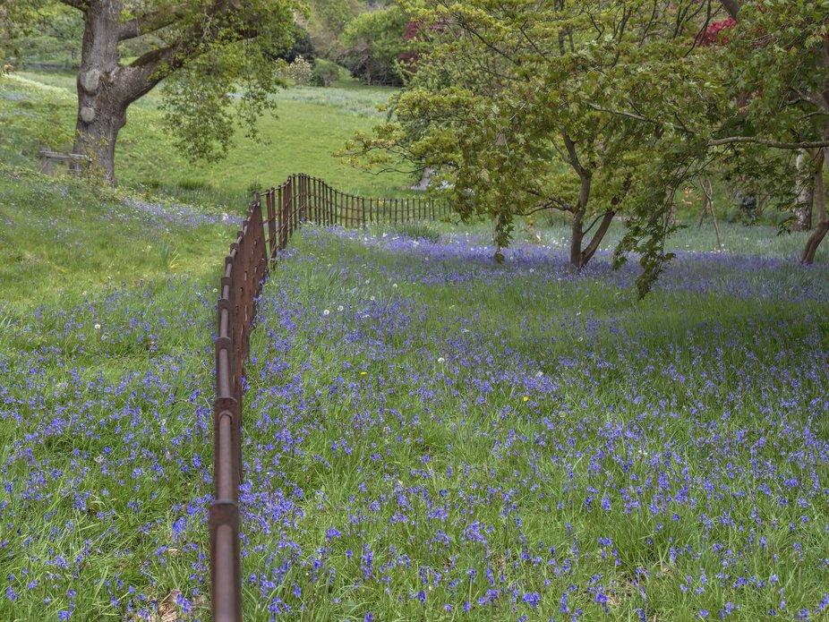 A fence line in Bodnant Gardens