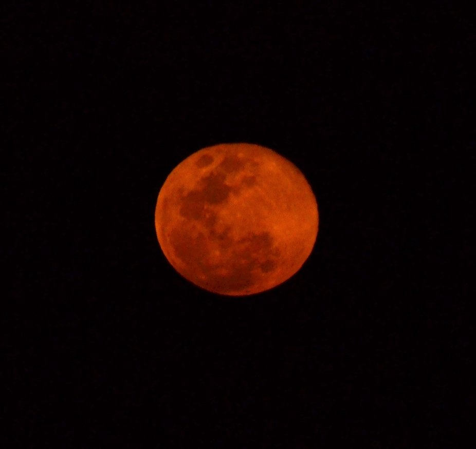 Luna de Sangre...
