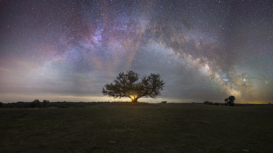 """Tree of Light""    May 10th 2019   Night sky with Jupiter in the Way.  Panorama..."