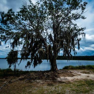 Bear Island in Ashepoo, South Carolina