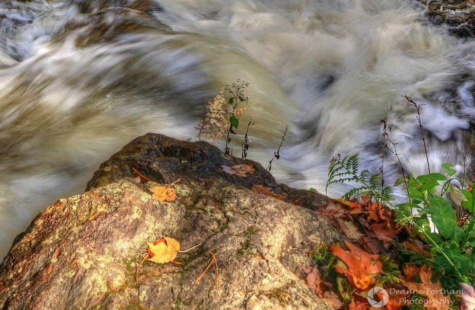 Garwin Lower Falls