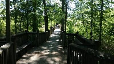 Bridge to Heritage Park