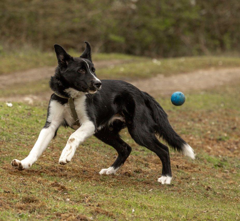 Keeping an Eye on the Ball