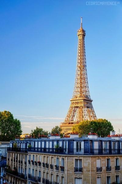 La tour Eiffel - Paris (FR)