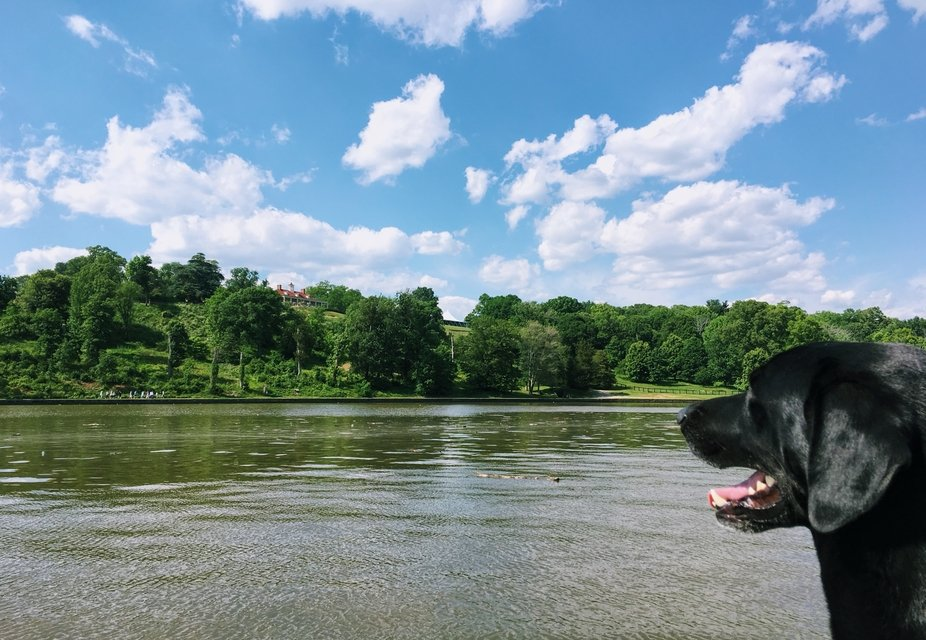 Benny visits Mount Vernon...George Washington's home in Virginia...by private boat.