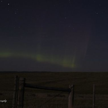 Northern Lights and Fenceposts