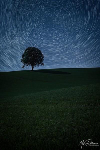 Moon Lit Star Trails
