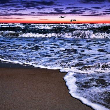 NSB Purple Skies