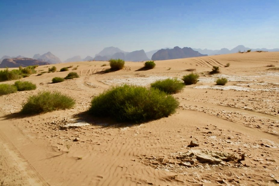 Wadi Rum, I will never forget this experience