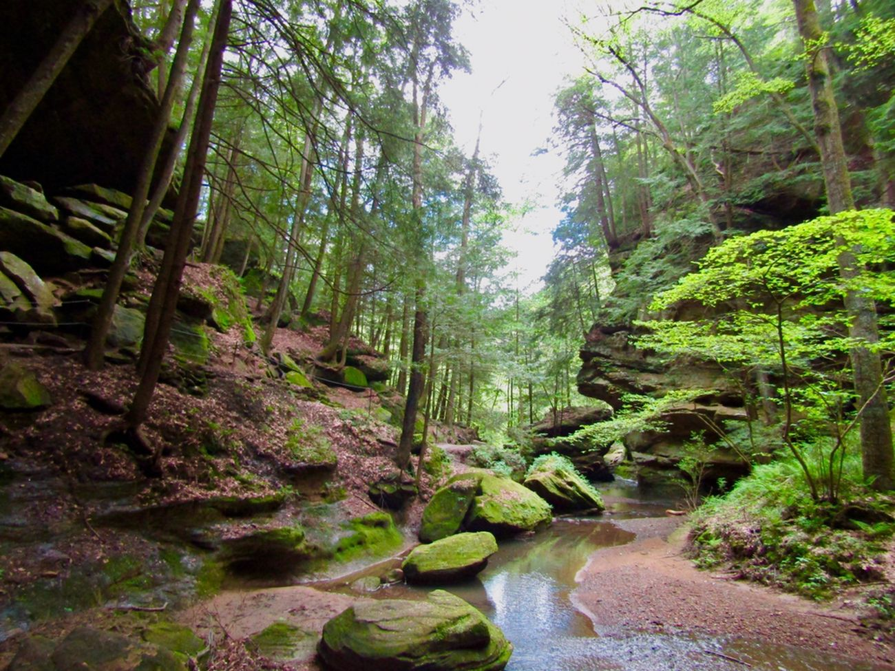 Tranquil Streams, Hocking Hills