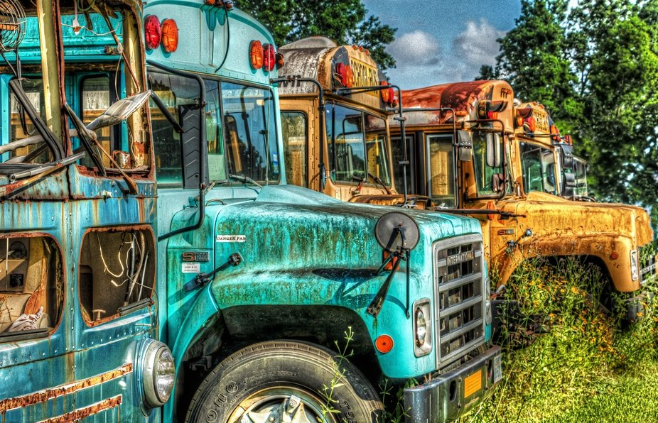 Baytown Busses