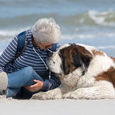 My wife and my Saint Bernard at the beach of Ameland , Holland
