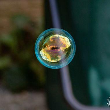 bubble-0378