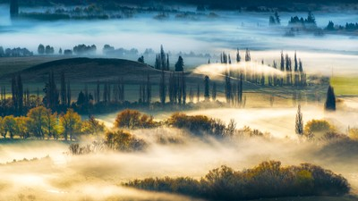 Morning Fog - New Zealand