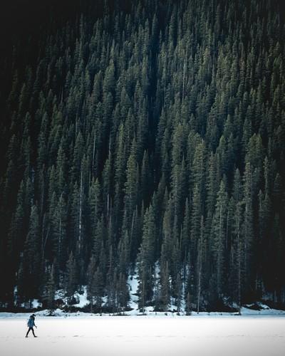 Frozen lake walk