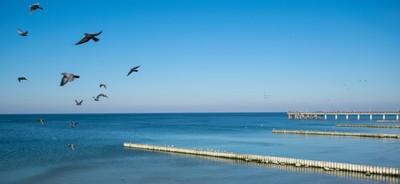 Kaliningrad Piers