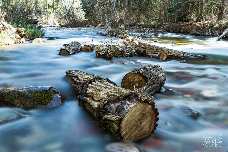 I could hear the river before I could see it, and when I found it I walked up and down it to take in all that it had to offer. This is by far my favorite shot I set up while exploring the river, I had an entire photoshoot with these logs the idea of something super still surrounded by movement gives a sense of blissfulness while being surrounded by chaos.