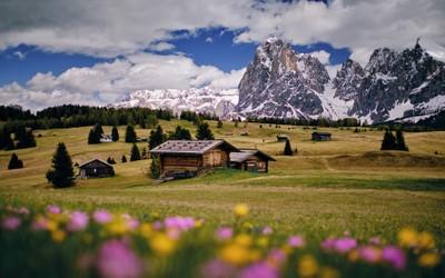 Alpe di Suisi - Italy