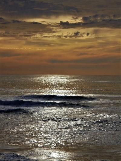 Vagueira at sunset