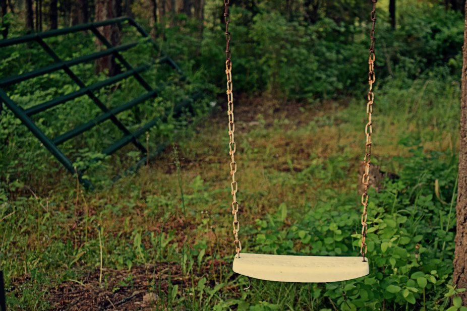 An Old Rusty Tree Swing In The Woods
