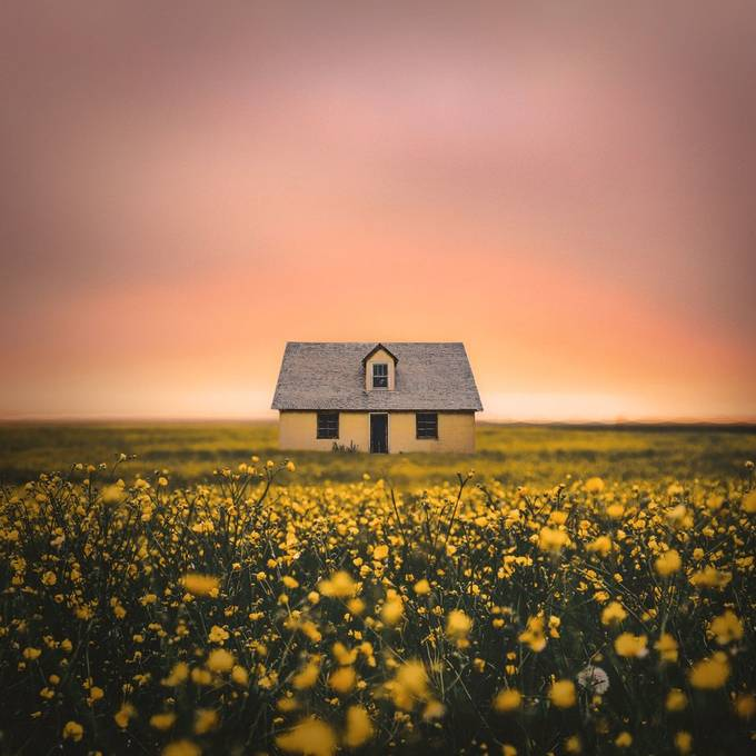 Mellow-Yellow by pedroquintela - Shades Of Yellow Photo Contest