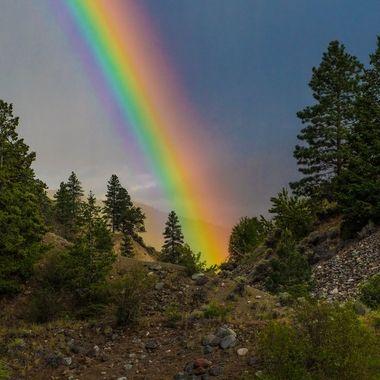 Brilliant Rainbow