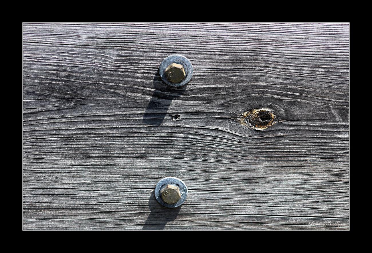 Wood (7)