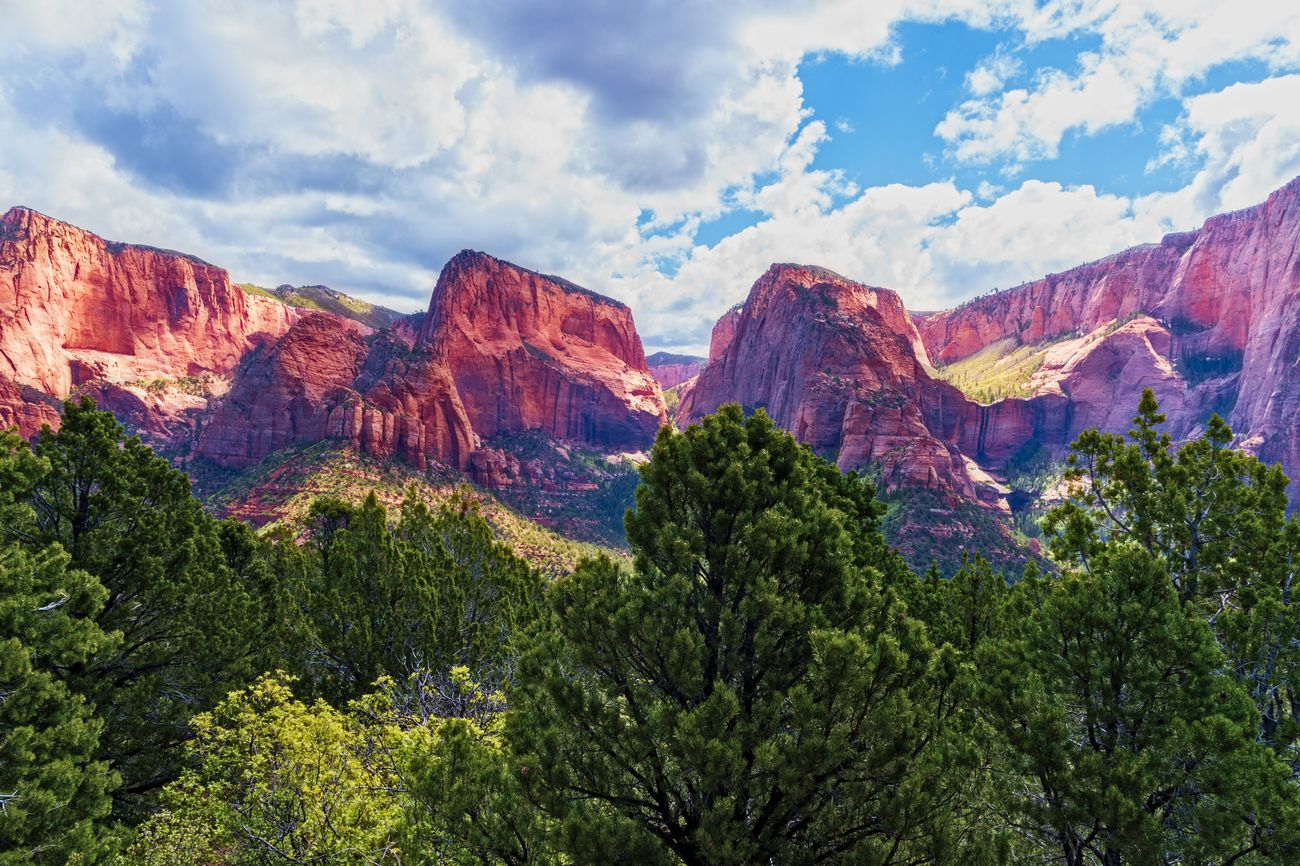 Kolob Canyon Zion National Park. Green trees, red rocky mountains under a blue sky with white fluffy clouds.
