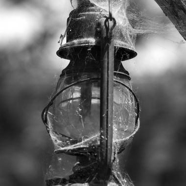 An old hurricane lamp hanging in the Albuquerque BioPark.