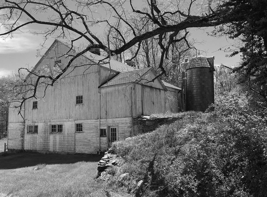 This historic barn is noted by the Connecticut Trust for Historic Preservation because it is cons...