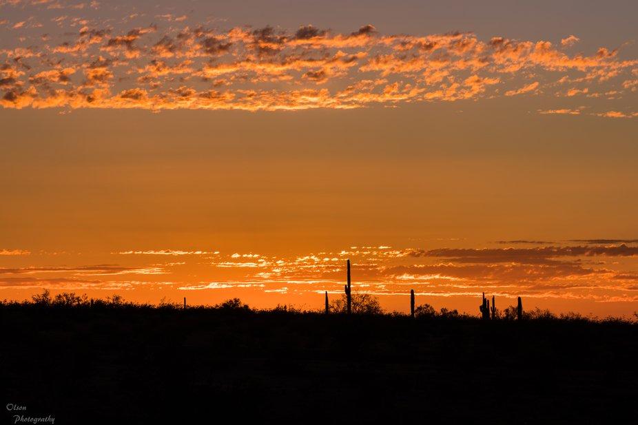 sun setting in the desert of Arizona