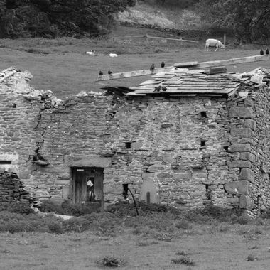Delapidated Dales barn.
