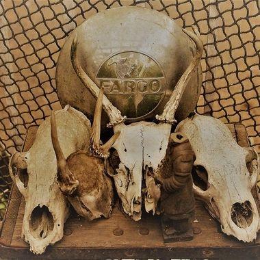 Skulls, no skin, Real skulls or artistic