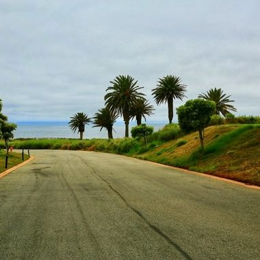 Scenic and private road to the beach!